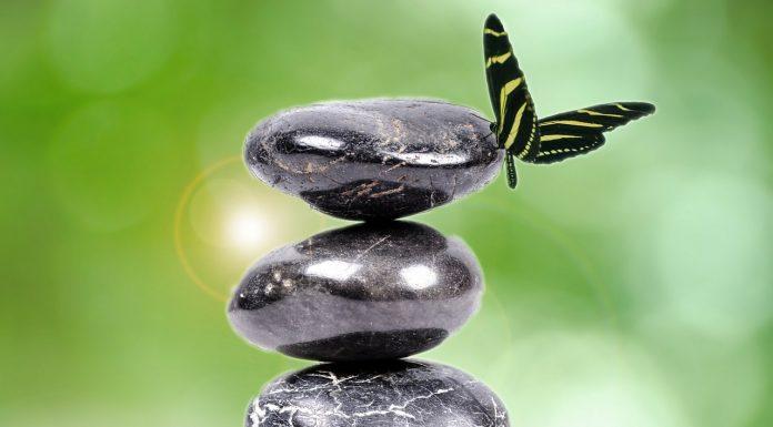 Tehnica Echilibrarii Emotionale