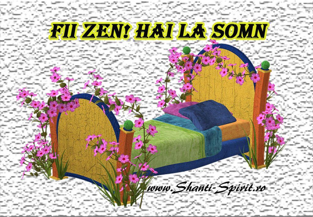Fii Zen-Hai la somn